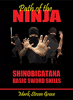 Shinobigatana: Basic Sword Skills